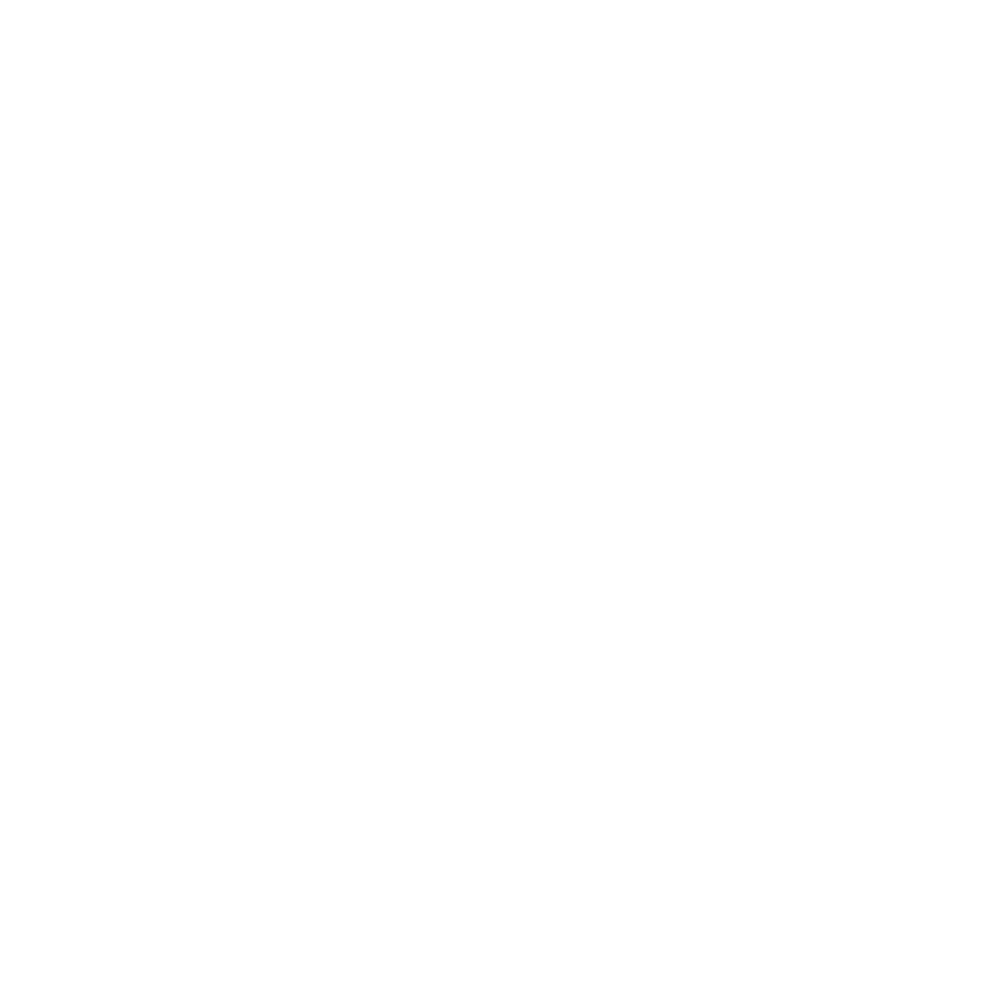 StoneBridge_Logo_Badge_2_white.png