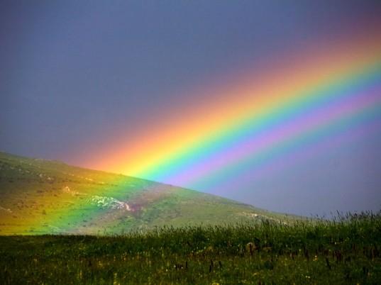 Je me libère du négatif et je renais à mon Identité Profonde et Divine grâce aux 7 Rayons Sacrés -