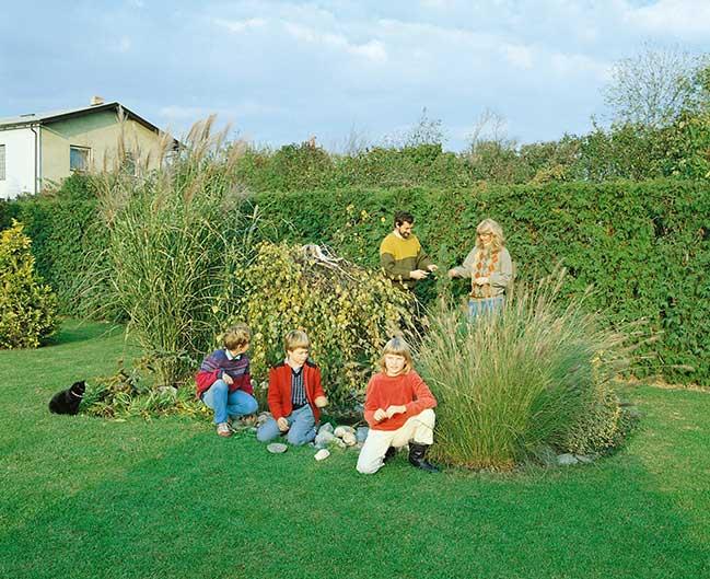 Family in the garden - Thuja occidentalis