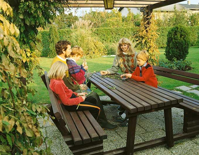 Thuja occidentalis family lifestyle