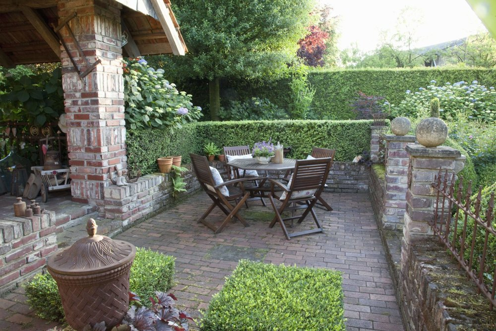 Buxus boxwood hedge country garden patio garden