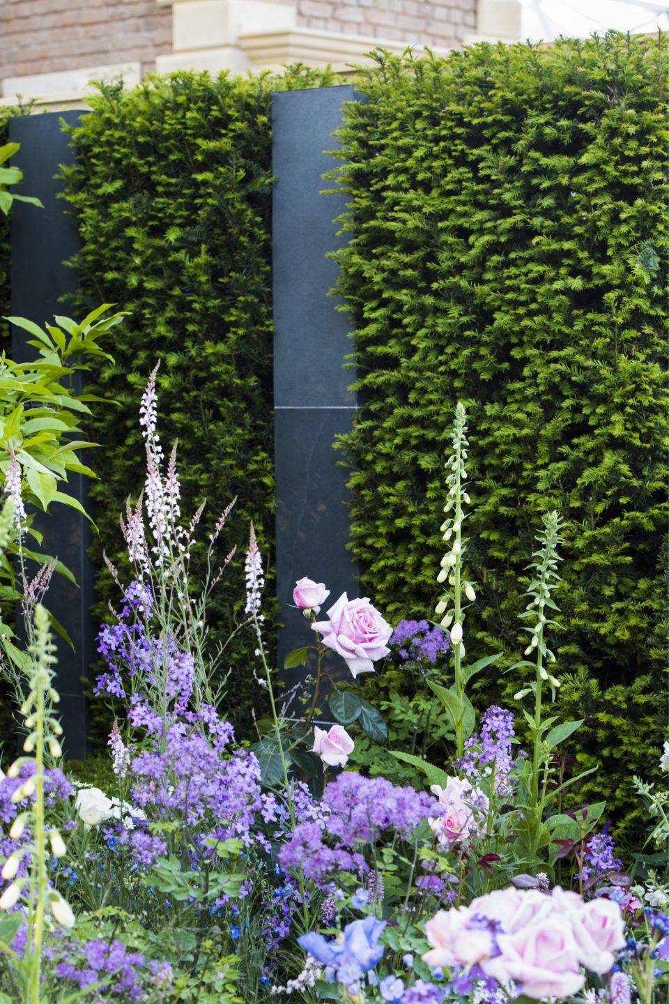 Taxus modern commercial courtyard soften accents