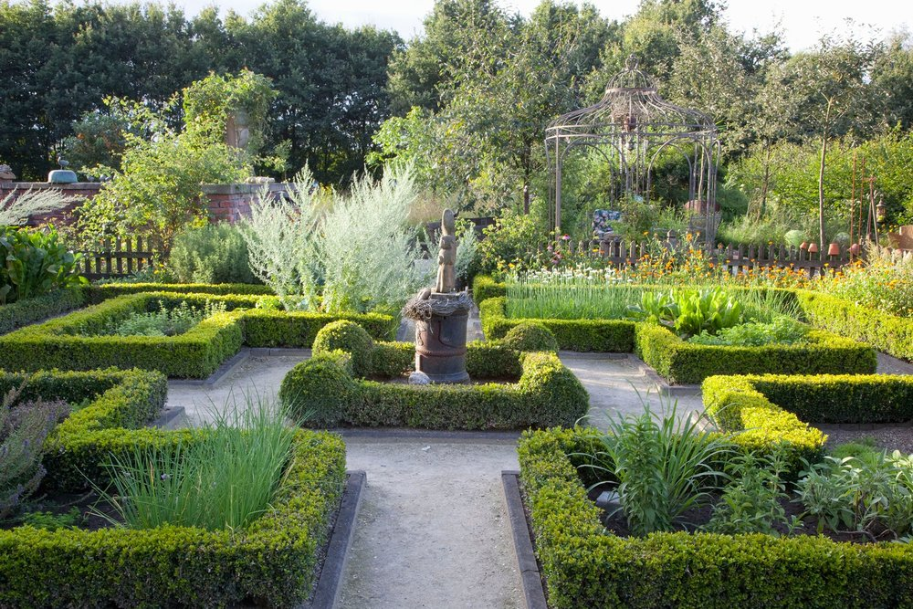 Buxus boxwood hedge estate formal garden