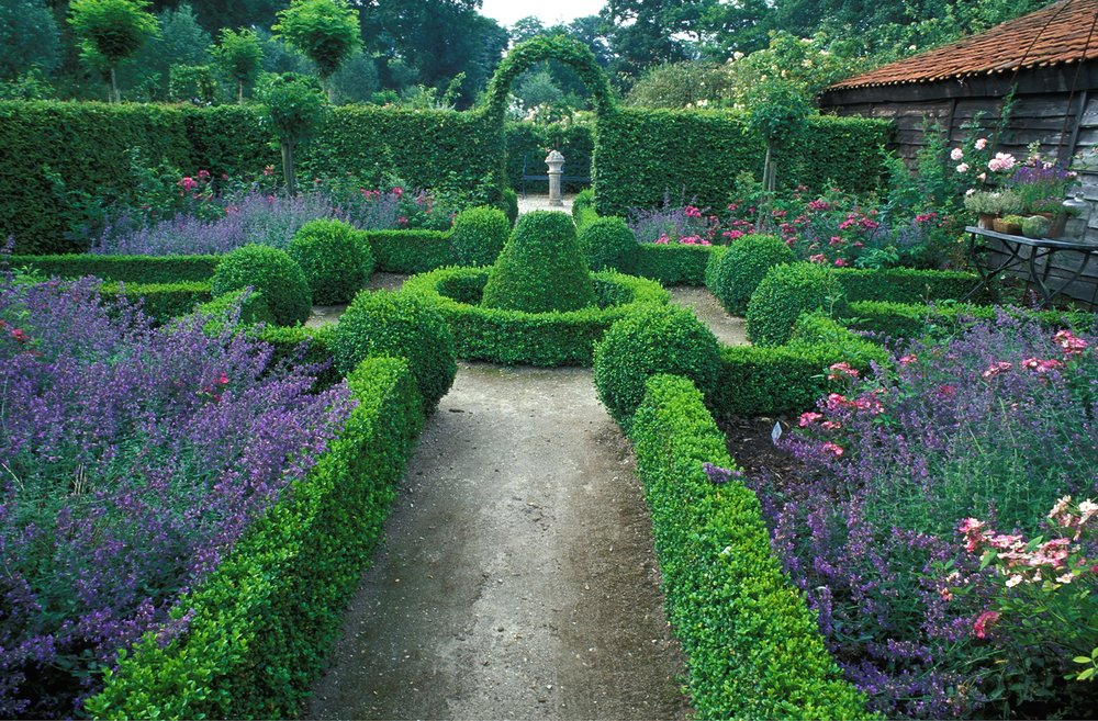 Buxus Fagus formal country estate