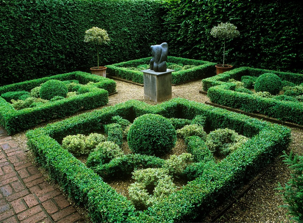 Fagus Buxus formal knot garden sculpture