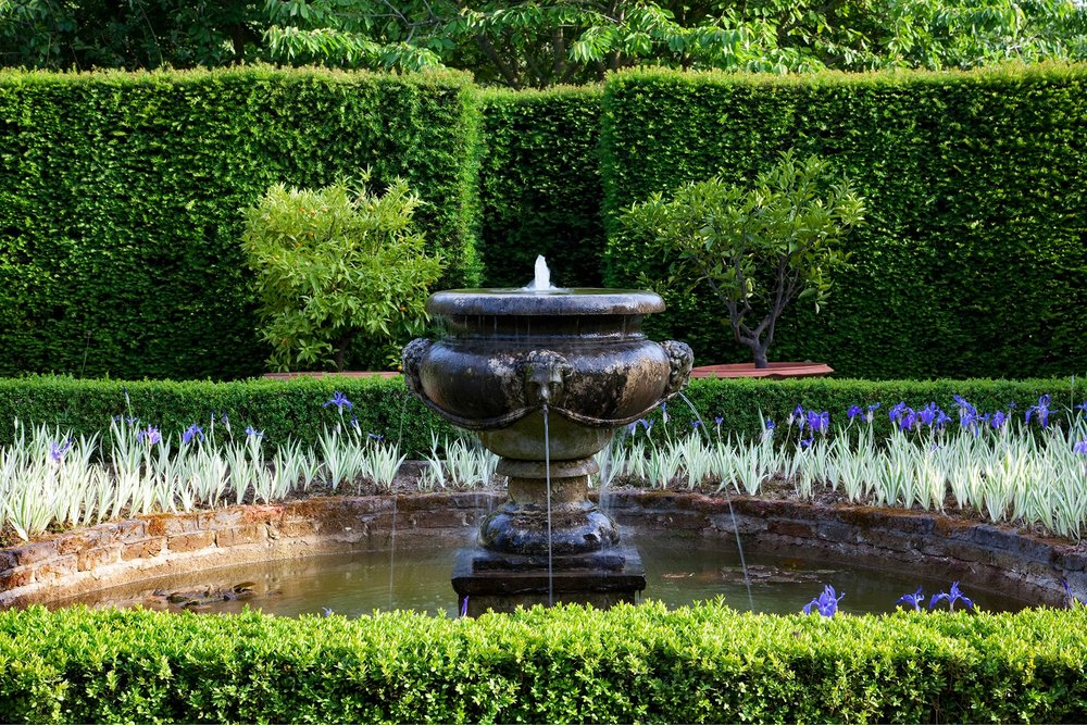 Buxus Taxus estate park public fountain