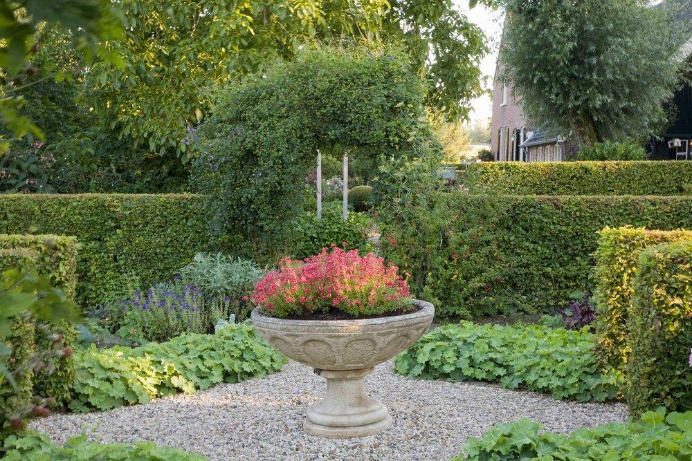Fagus beech hedge formal country garden border privacy