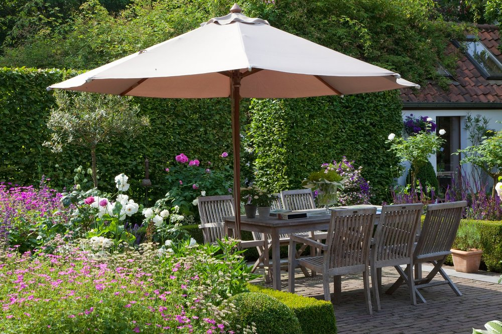 Fagus beech hedge country garden private eating area