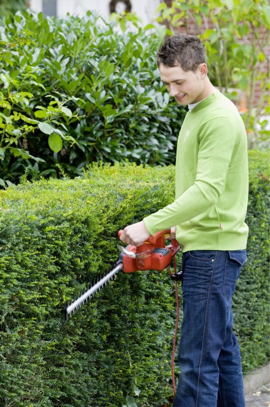 Pruning Taxus hedge trimmer maintenance InstantHedge