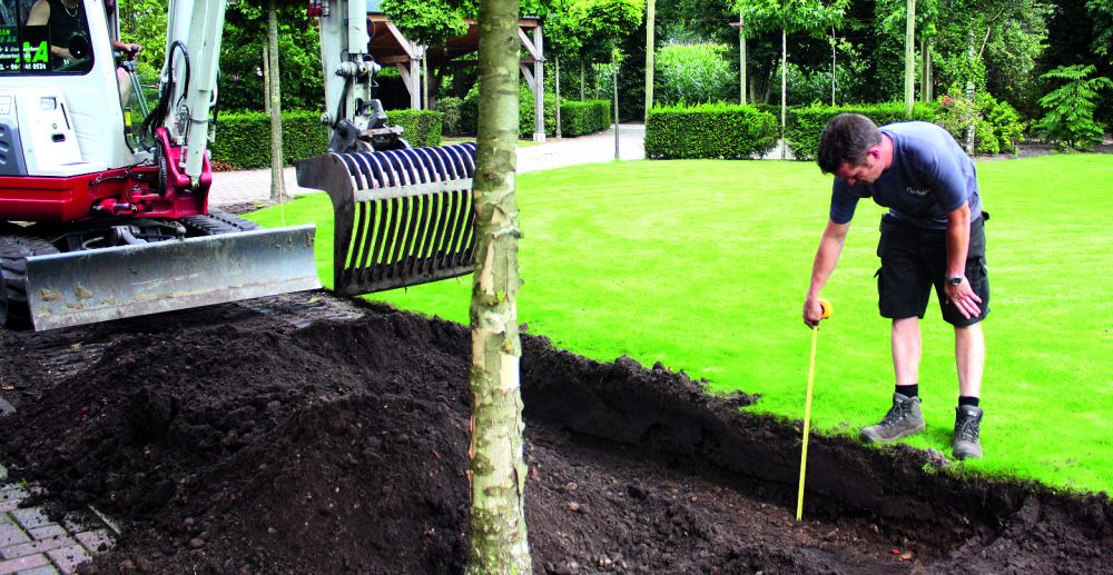 Measure planting hedge install