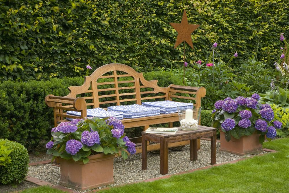 Fagus beech Taxus yew country garden hedge bench InstantHedge