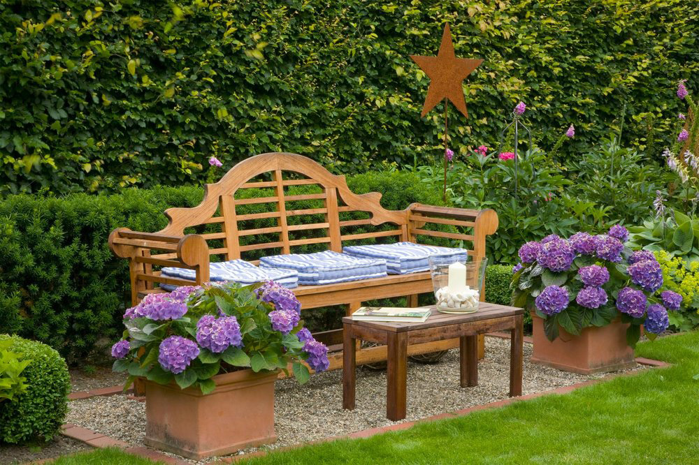 Fagus beech Taxus yew country garden hedge privacy bench