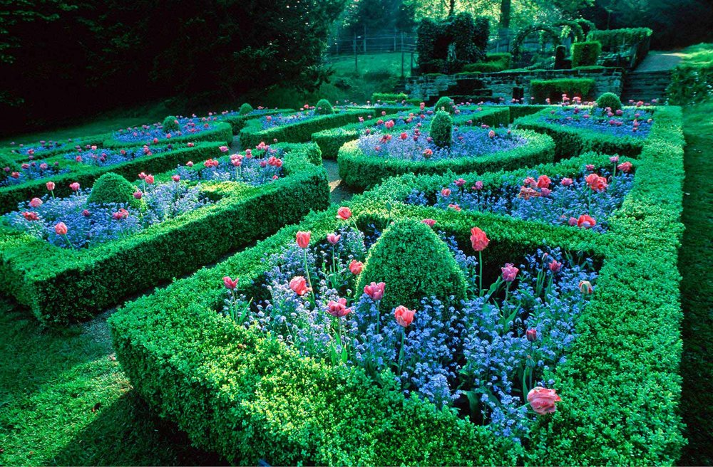 Buxus formal flower garden