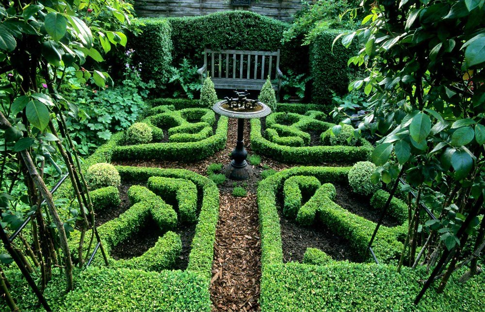 With a little imagination and some boxwood ( Buxus ) InstantHedges, the possibilities are endless for a landscape.