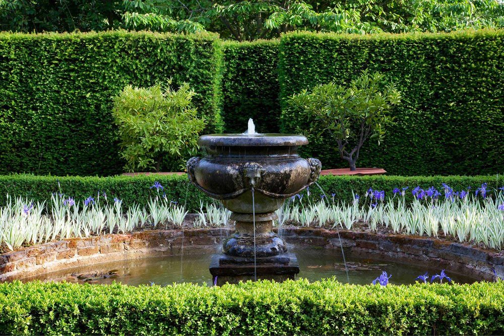 Buxus Taxus estate English park public fountain