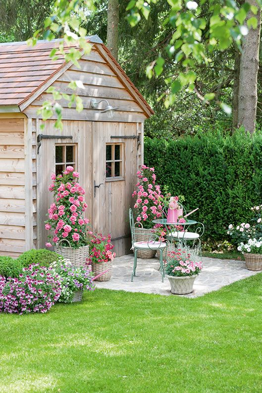 Taxus gardening estate cottage country