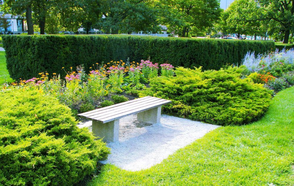 Taxus suburban estate garden