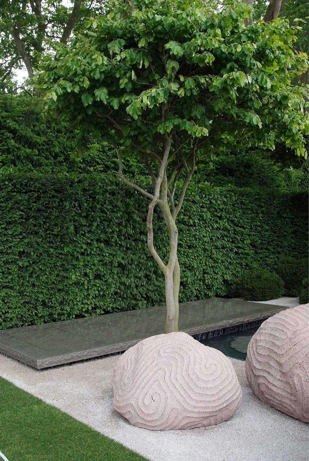 Fagus modern courtyard commercial