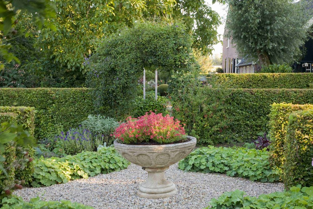 Fagus beech hedge formal country garden