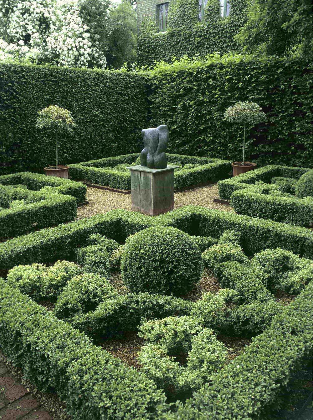 Fagus Buxus formal knot garden sculpture