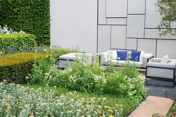 Carpinus hornbeam hedge formal modern courtyard garden