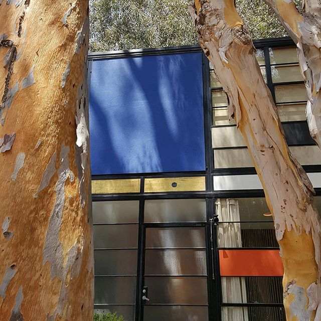 Eames House, Case Study No. 8 (1949) #prp3_2019