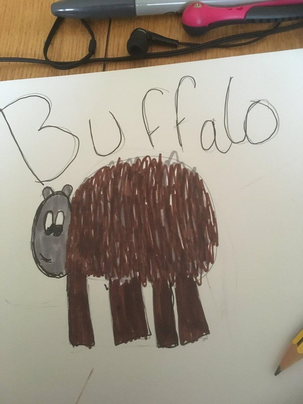 'Buffalo' by Katie Goodall
