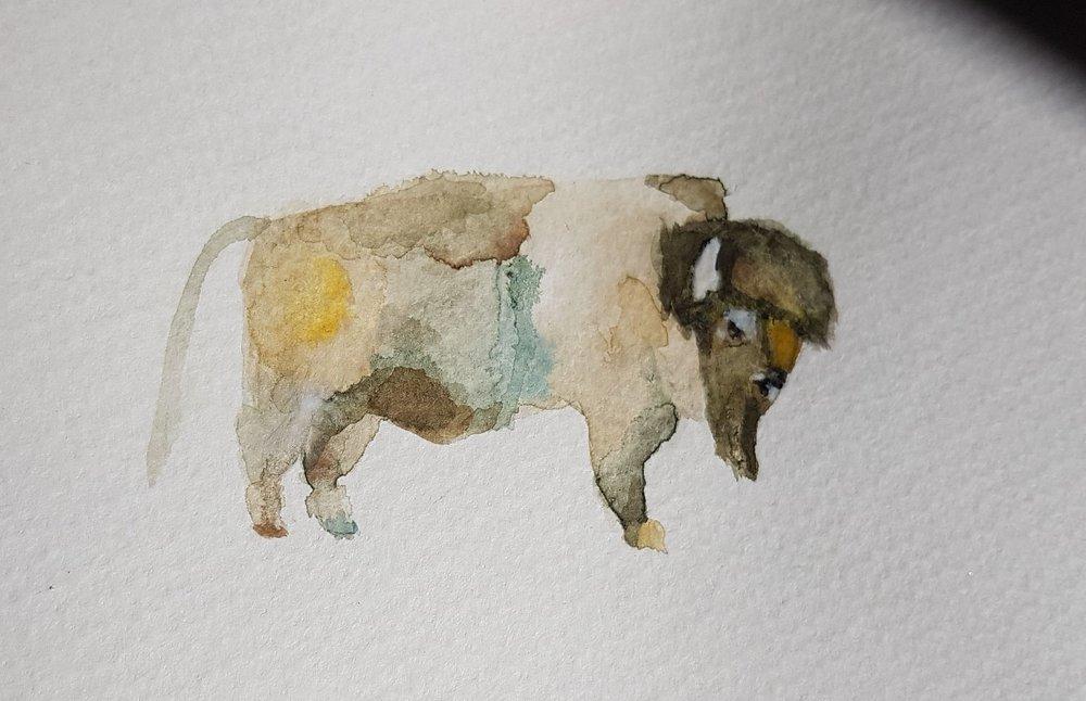 Buffalo by Anniek