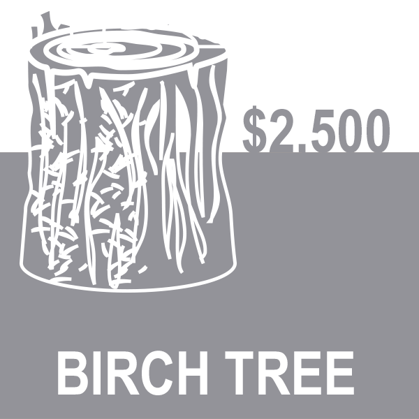 BIRCH-Tree.png