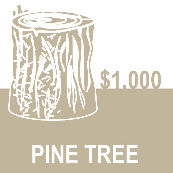 Pine-Tree.png