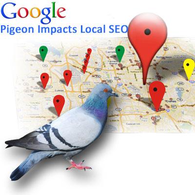 google-pigeon.jpg