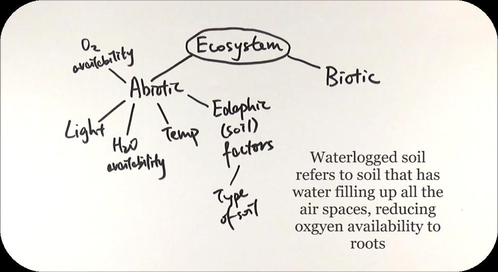 A2 Biology - Ch.23 Ecosystems   6 Uploads