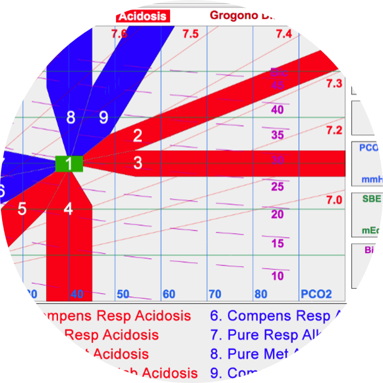 Acid-Base Edzuki Profile.png