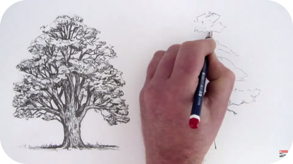 How to Draw Trees   8 Uploads