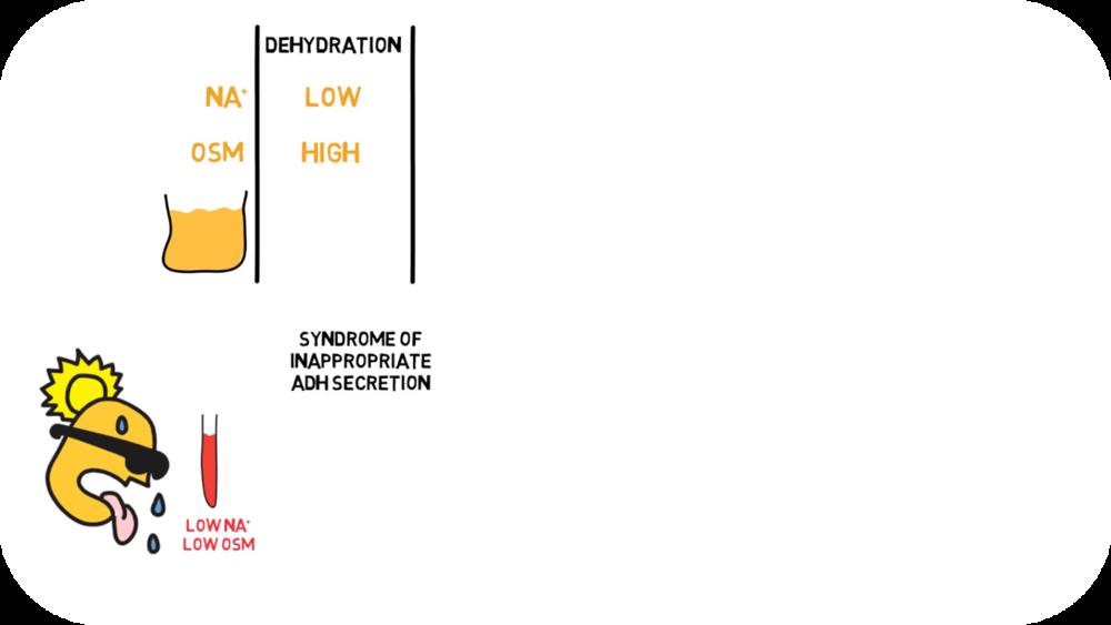 Electrolyte & acute metabolic disorders   15 Uploads