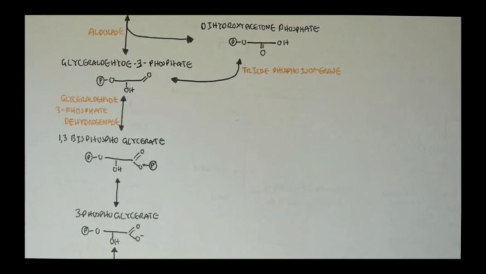 Biochemistry   29 Uploads