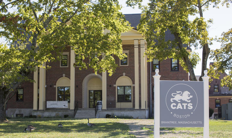 CATS Academy (9-12)