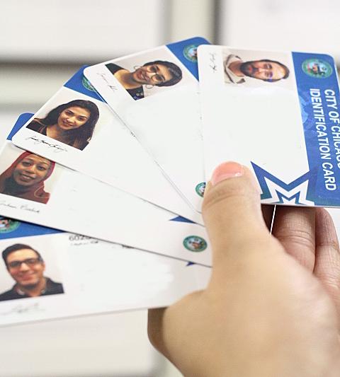 chicago-id-cards-270x300[1].jpg