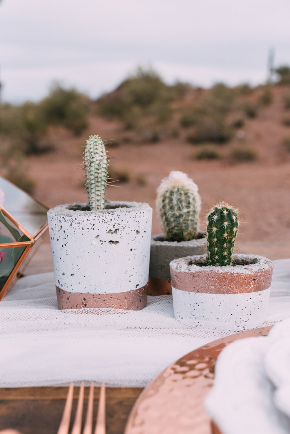Copper and concrete potted cactus on table