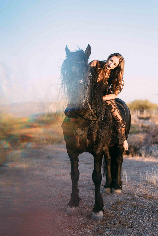 Arizona Portrait Equine_Alyssa Ryan Photography18.jpg