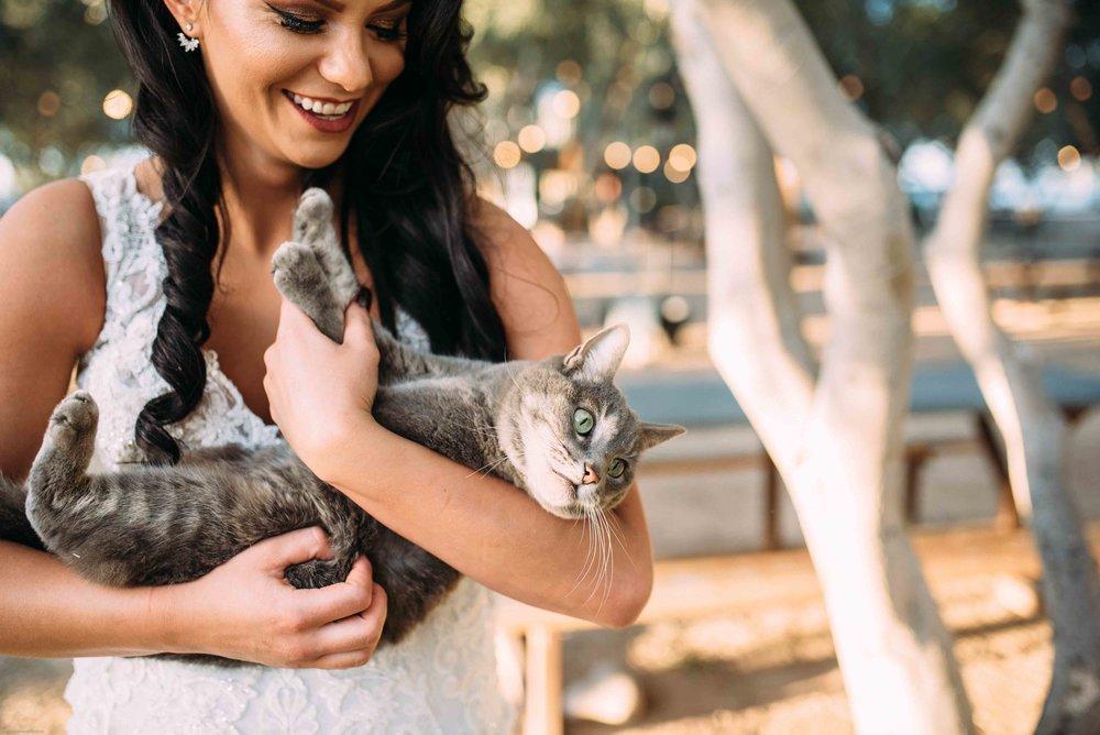 Queen Creek Olive Mill Arizona Wedding_Alyssa Ryan Photography38.jpg