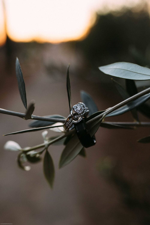 Queen Creek Olive Mill Arizona Wedding_Alyssa Ryan Photography57.jpg