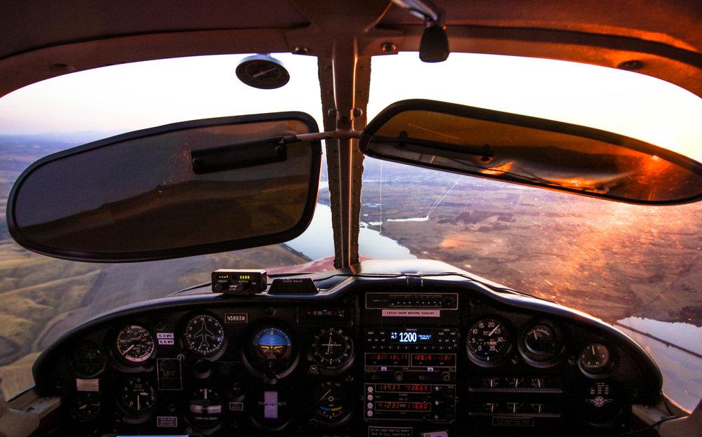 Fly-28.jpg