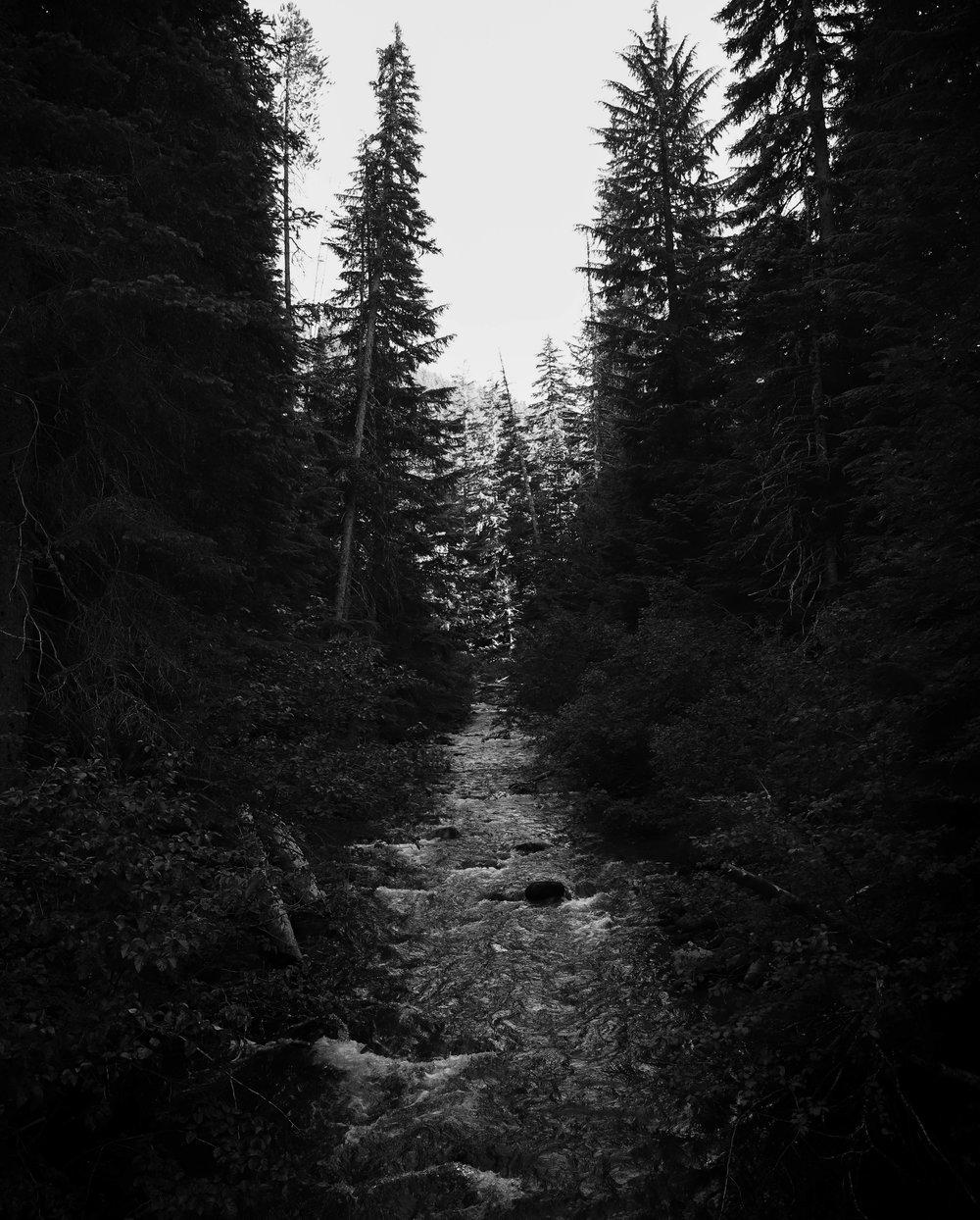 BW river.jpg
