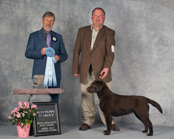 Tazzy best puppy 2012 (1).jpg