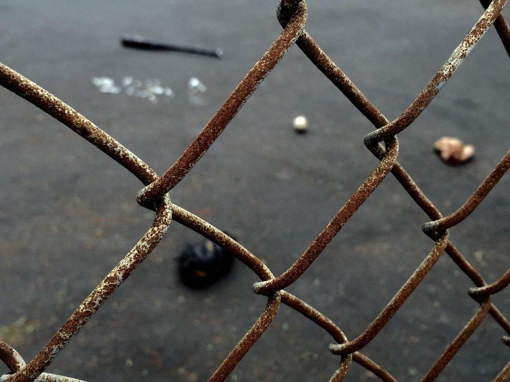 Rozzie fence 1.jpg