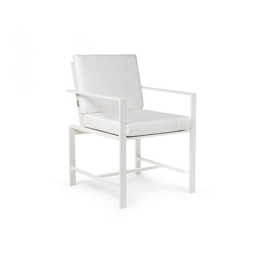 Dining Arm Chair  copy.jpg