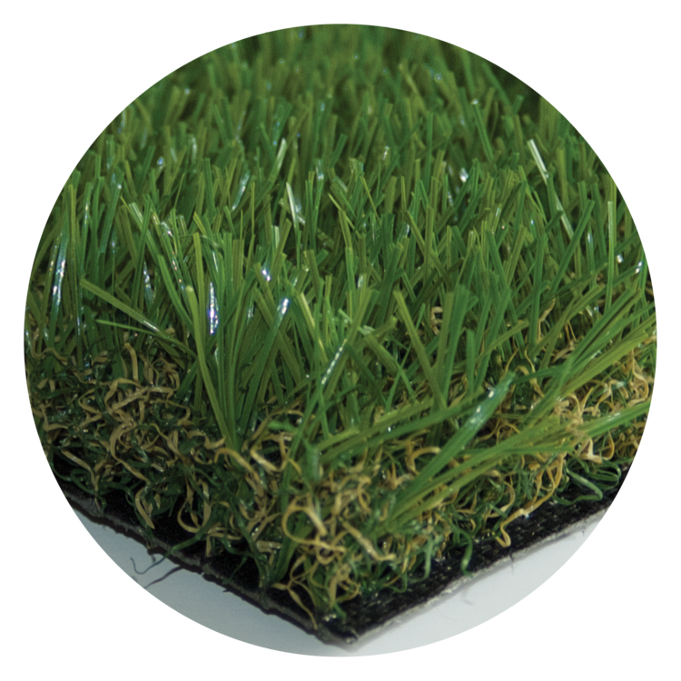 Tanner's Eco Grass.png