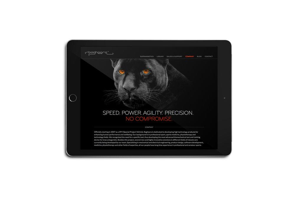 BAGHEERA-ipad-screen2.jpg