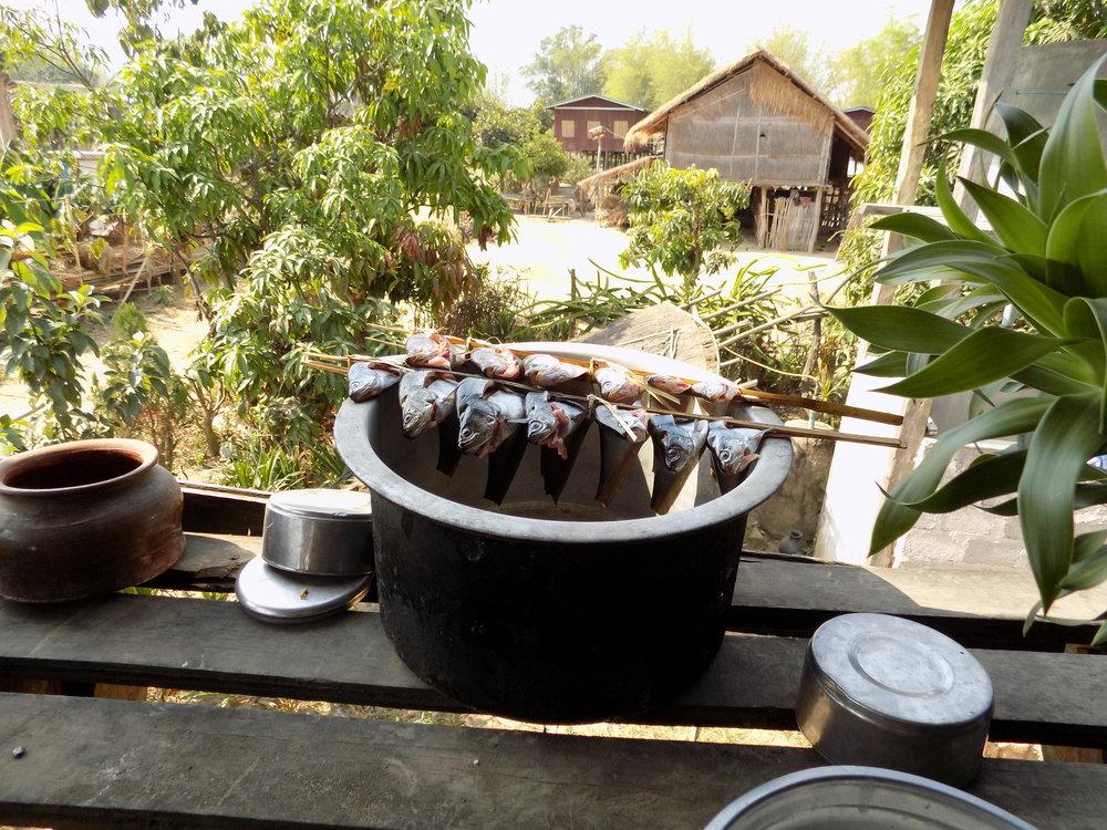 foodx_myanmar (8).jpg